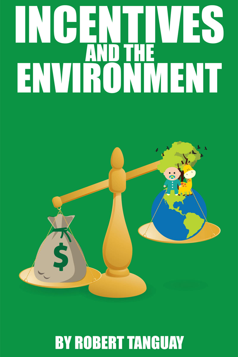 Incentives and the Environment